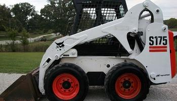 Bobcat - S175